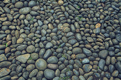 Stone Flooring Texture Photo Background Stock Photos