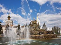 The Stone Flower fountain Royalty Free Stock Photo