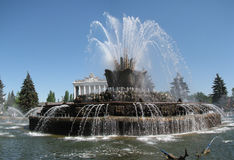 The Stone Flower fountain in VVC Royalty Free Stock Photo