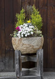 Stone flower pot. With nice arrangement of plants and flowers stock images