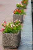 Stone flowerpots in the park. Stone flowerpots for flowers in a city park on a marble path royalty free stock photography
