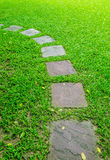 Stone foot path in garden Stock Photo