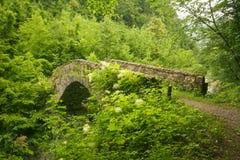 Stone footbridge stock photography