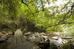 Stone footbridge Royalty Free Stock Image