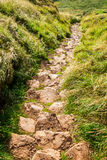 Stone footpath in the mountains Royalty Free Stock Photography