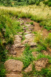 Stone footpath in the mountains Stock Image