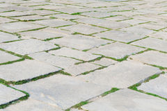 Stone footpath pattern with green grass in perspective background Royalty Free Stock Photo