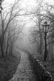 Stone footpath and street lights in the park. Stock Photos