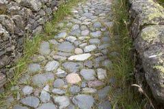 Stone Footpath, Watendlath; Lake District Royalty Free Stock Photography