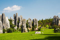 Stone forest. China's National Park, Yunnan, China Stock Photography