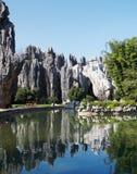 Stone forest. China's National Park, Yunnan, China Royalty Free Stock Image