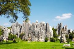 Stone forest. China's National Park, Yunnan, China Stock Photo