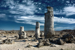 Stone Forest Royalty Free Stock Photography