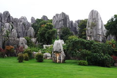 Free Stone Forest Stock Photography - 6413032
