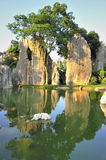Stone forest. Yunnan, China singular nature of the geographical wonders Royalty Free Stock Photography