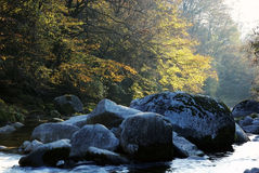 Stone and forest in autumn Royalty Free Stock Photo