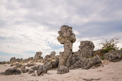 Stone Forest, Bulgaria. Pobiti Kamani. Fabulous natural rock formation, part of the Stone Forest ( Pobiti Kamani ) located not far of Varna, Bulgaria Royalty Free Stock Photos
