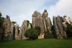 Stone forest in China Stock Image