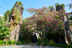 The stone forest and flowers Stock Photos