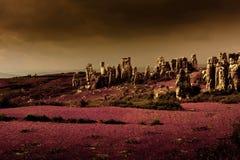 Stone forest karst Stock Image