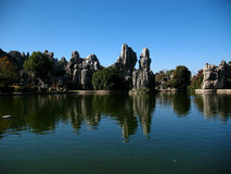 Stone forest. Karst formations (stone forest )by the lake Stock Images