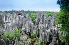 Stone forest in Kunming Stock Images