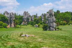 Stone Forest National Park Stock Photography