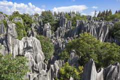 Stone forest national park in Yunnan province Royalty Free Stock Photo
