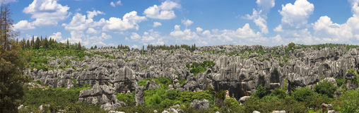 Stone forest national park in Yunnan province Royalty Free Stock Photos