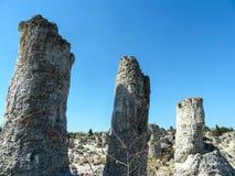 Stone forest Pobiti kamni in Bulgaria stock images