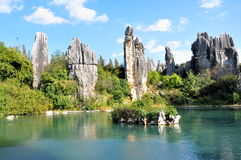 Stone Forest. The Stone Forest or Shilin is a notable set of limestone formations located in Shilin Yi Autonomous County, Yunnan Province, China Royalty Free Stock Photos