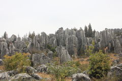 Stone forest. TheStone ForestorShilinis a notable set oflimestoneformations located inShilin Yi Autonomous County,YunnanProvince, People's Stock Photography