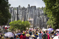 Stone forest tourist visit Royalty Free Stock Photography