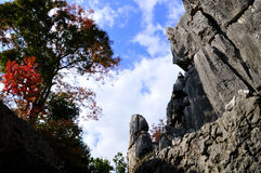 Stone forest in yunnan Stock Photos