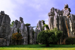 Stone forest in yunnan Stock Photo