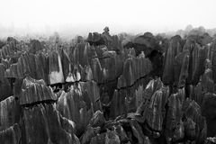 Stone Forest, Yunnan, China stock images