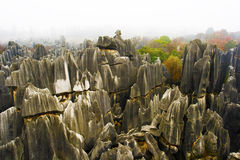Stone Forest, Yunnan, China. Stone formation in Stone Forest, Shilin, Yunnan, China Stock Photography