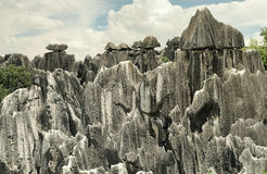 Stone Forest,Yunnan,China Royalty Free Stock Image