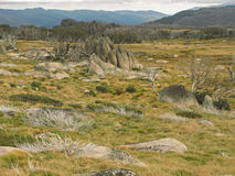 Stone formations in alpine meadow. Australian Snowy Mountains Stock Images