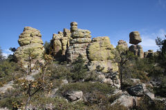 Stone formations at Chiricahua. Some of the famous rock formations found in the middle of the Chiricahua National Monument in southern Arizona, in the early Stock Photo