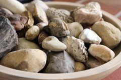 Stone and fossil collection Royalty Free Stock Photography