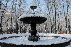 A stone fountain covered with snow on a winter day. A beautiful stone fountain covered with snow on a winter day royalty free stock images