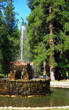 Stone Fountain in Forest Stock Image