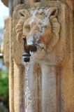Stone Fountain With Lion Face Stock Photo