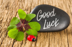 A stone with a four-leafed clover ans a ladybug. A stone with a four-leafed clover and a ladybug stock images