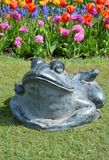 Stone frog Royalty Free Stock Photos
