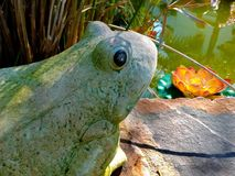Stone frog figure Royalty Free Stock Photos