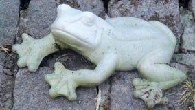 Stone frog Stock Photo