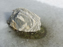 Stone in frozen water Stock Photography