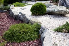 Stone garden. Decoration of plant in stone garden Royalty Free Stock Image